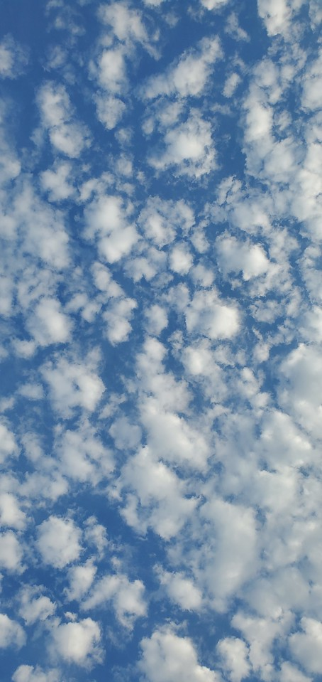WEEK 260 - SKY - JODIE CUE