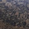 WEEK 242 - TREE - LINDA BENNETT