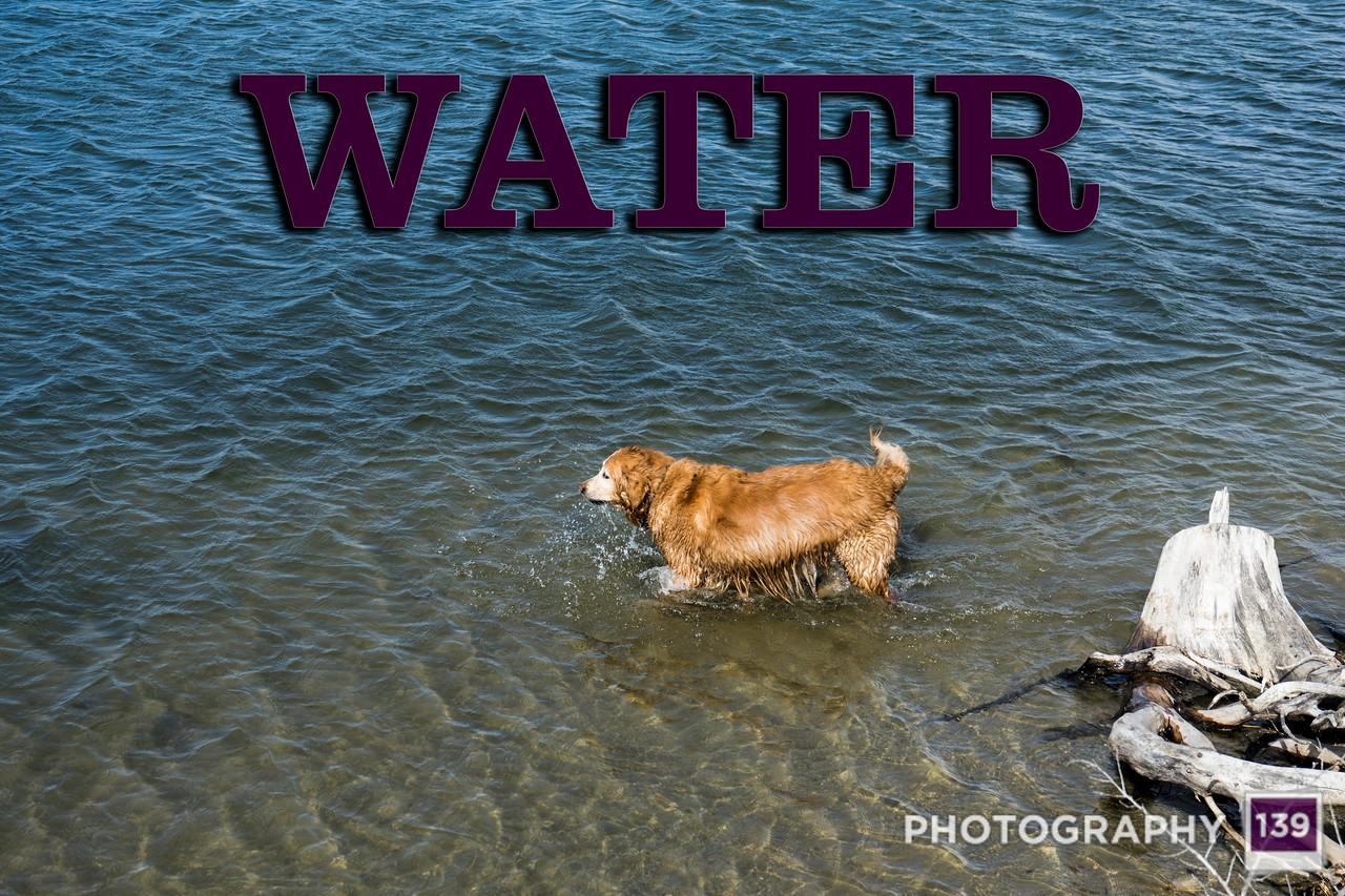 WEEK 235 - WATER