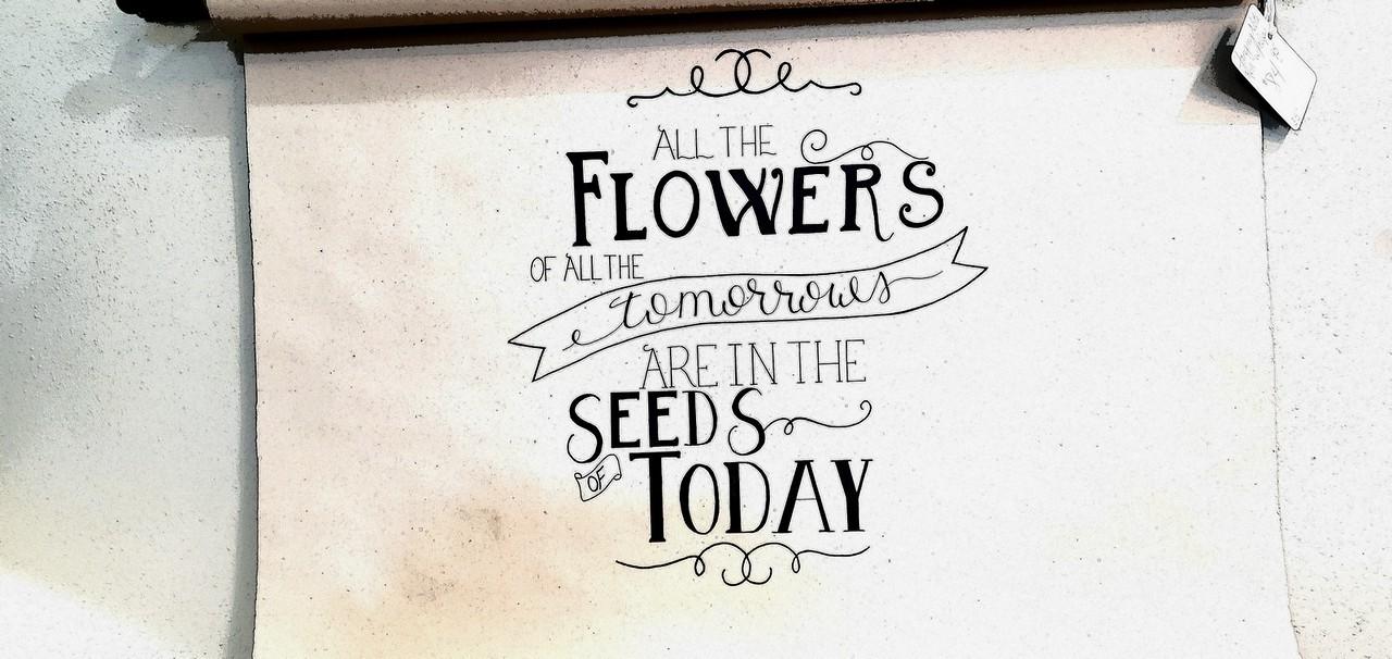 WEEK 316 - FLOWER - TAMARA PETERSON