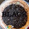 WEEK 281 - BLACK
