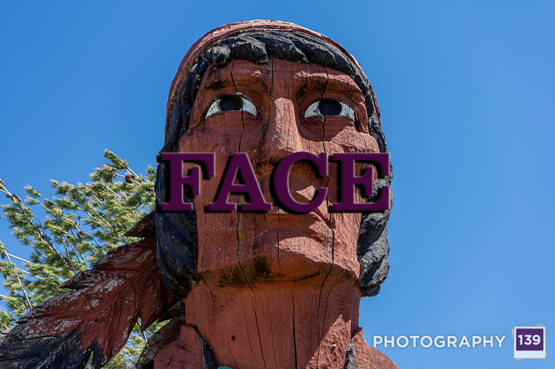 WEEK 295 - FACE