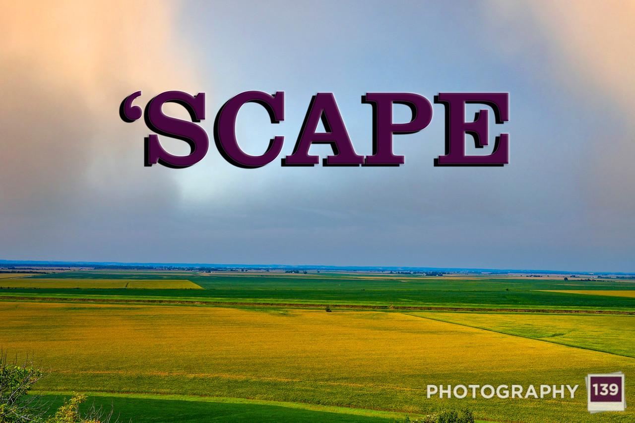 WEEK 312 - 'SCAPE