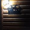 WEEK 271 - NIGHT - SHANNON BARDOLE-FOLEY