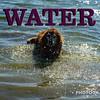 WEEK 262 - WATER