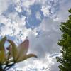 WEEK 39 - SKY/CLOUDS - ANGIE DEWAARD