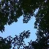 WEEK 39 - SKY/CLOUDS - MIKE VEST