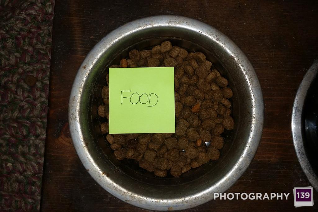 WEEK 9 - FOOD