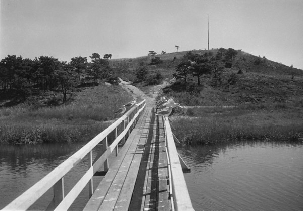 WT3_1937 - Uncle Tim's Bridge and Cannon Hill