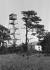 WT3_1931 - Wellfleet Fire Tower
