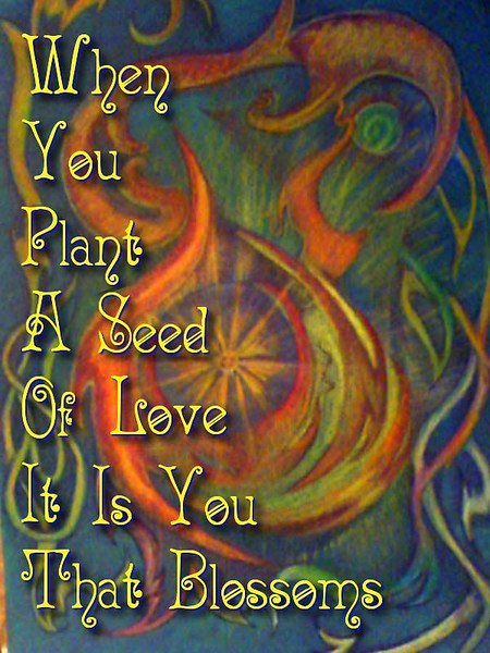 when you plant a seed of love
