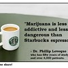 marijuana less addictive & dangerous than Starbucks expresso
