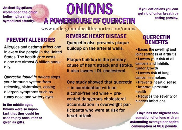 onions - a powerhouse of quercetin