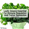 leafy greens - immune regulation & tumor resolution