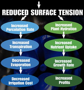 surface tension affects plants growth