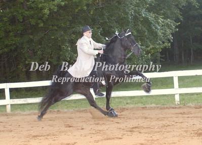 CLASS 30  AMATEUR WALKING HORSE  PONY