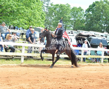 OPENING CEREMONY - FLAG HORSE-CANDIDS