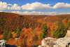 WV HOPEVILLE DOLLY SODS WILDERNESS ROHRBAUGH TRAIL RED CREEK CANYON OCTAB_MG_1005MMW