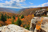 WV HOPEVILLE DOLLY SODS WILDERNESS ROHRBAUGH TRAIL RED CREEK CANYON OCTAB_MG_2794bMMW