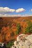 WV HOPEVILLE DOLLY SODS WILDERNESS ROHRBAUGH TRAIL RED CREEK CANYON OCTAB_MG_0962MMW