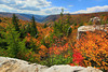 WV HOPEVILLE DOLLY SODS WILDERNESS ROHRBAUGH TRAIL RED CREEK CANYON OCTAB_MG_2656MMW