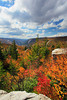WV HOPEVILLE DOLLY SODS WILDERNESS ROHRBAUGH TRAIL RED CREEK CANYON OCTAB_MG_2614MMW