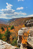 WV HOPEVILLE DOLLY SODS WILDERNESS ROHRBAUGH TRAIL RED CREEK CANYON OCTAB_MG_2722eMMW