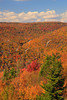 WV HOPEVILLE DOLLY SODS WILDERNESS ROHRBAUGH TRAIL RED CREEK CANYON OCTAB_MG_0929MMW