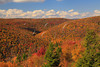 WV HOPEVILLE DOLLY SODS WILDERNESS ROHRBAUGH TRAIL RED CREEK CANYON OCTAB_MG_0917MMW