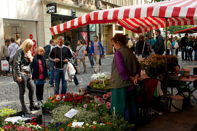 Shopping for flowers,