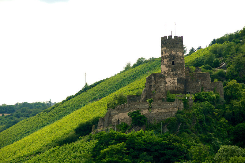 Fürstenberg Castle, south of Bacharach.  16-50-33