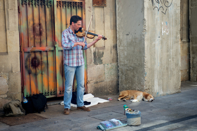 A performer and a violinist.