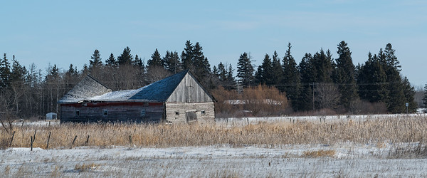 Manitoba Prairies in Winter