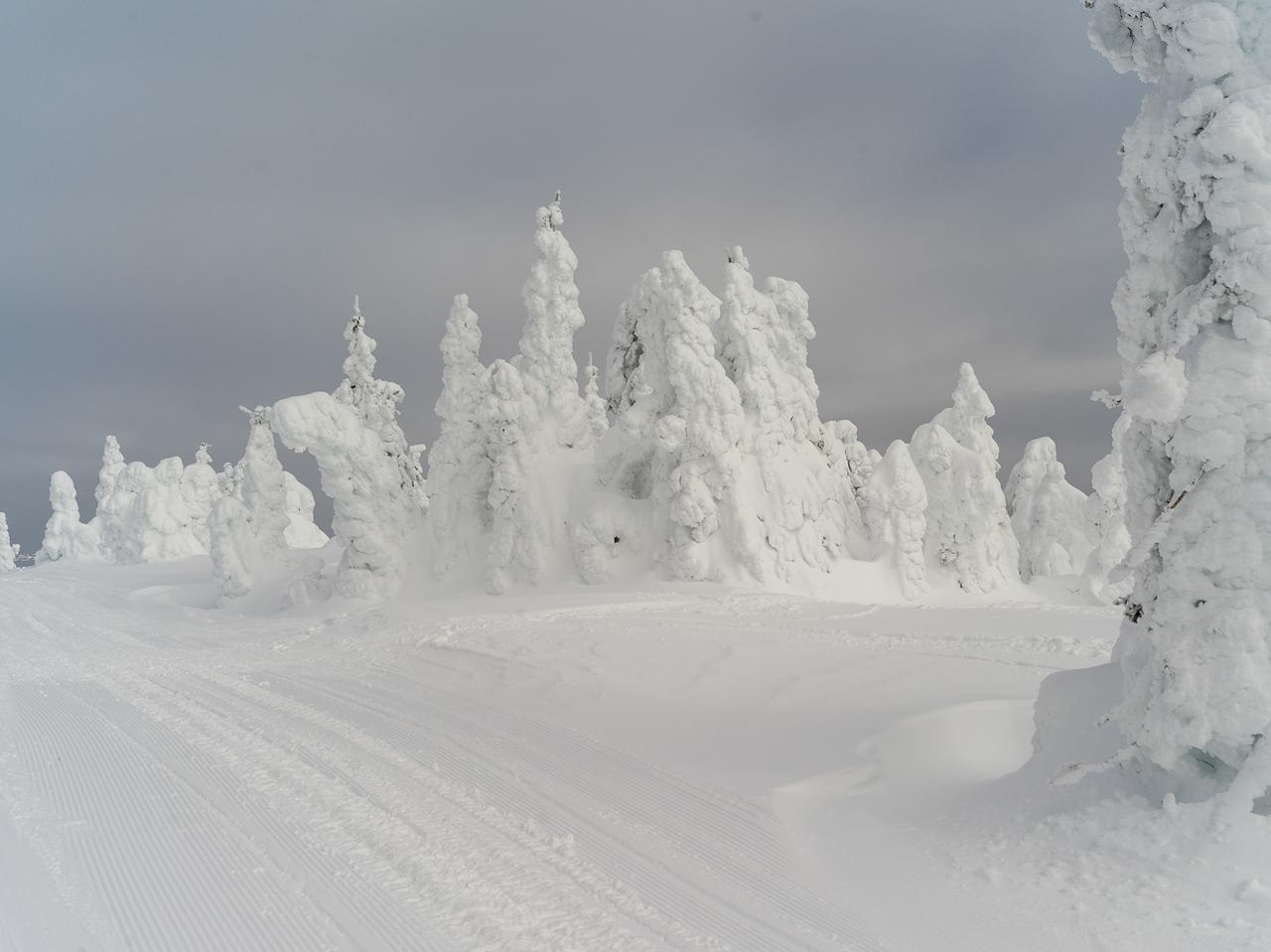Skiing in Sun Peaks - Kamloops