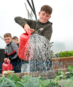 Young volunteers help out with watering the produce.