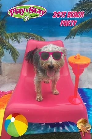 2017 Beach Party