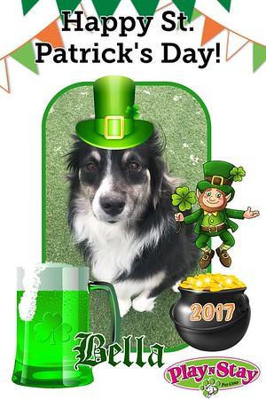 2017 St. Patrick's Day
