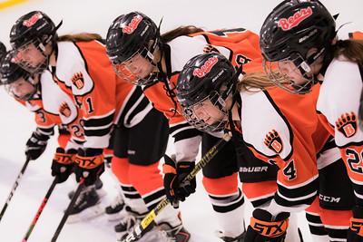 _DLS9476WBLgirlsHockeyIrondale2019