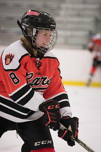 _DLS9251WBLgirlsHockeyIrondale2019