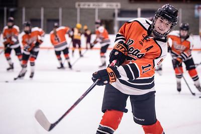 _DLS3626GirlsHockeyVForestLake2020
