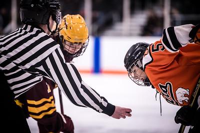 _DLS3738GirlsHockeyVForestLake2020