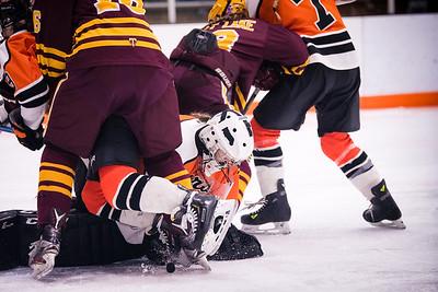 _DLS3975GirlsHockeyVForestLake2020