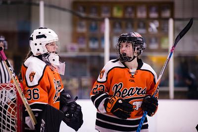 _DLS3982GirlsHockeyVForestLake2020
