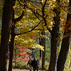 Visitors make their way through colorful Fall foliage to the WHOA event at Moses Scout Reservation Saturday.