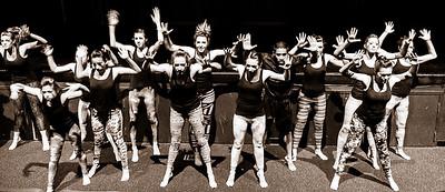 WHS Dance 2013-4
