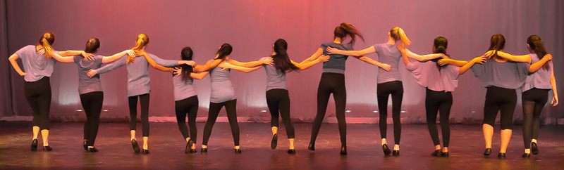 WHS Dance 2013-14