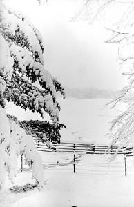 500 Winter Scene