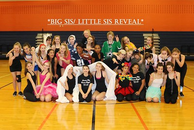 Big/Lil Sis Reveal 06/14/17