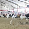 WIJrSF16IMG_3323