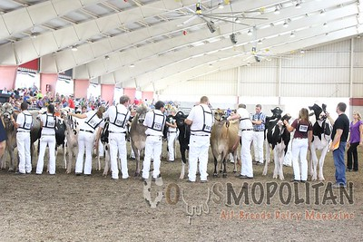 WI JR SF 16 Showmanship Heats